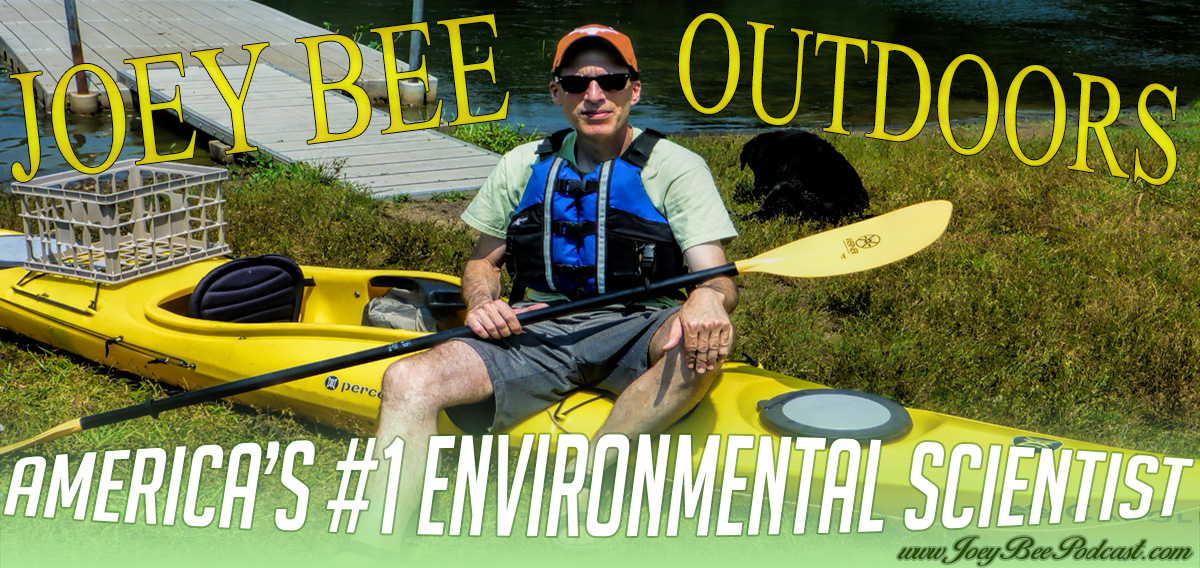 Joey Bee Outdoors, Science, and Nature