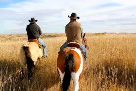 COWBOY RIDING A HORSE PART 1