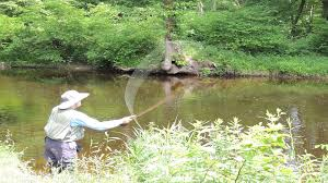 FLY FISHING INSPECTOR DAVE