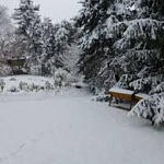 Podcast #86 Winter Gardening Activities