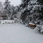 Podcast #86 Winter Gardening Activities