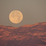 Podcast #215 Apollo 11 - Moon Landing